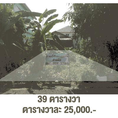 ที่ดิน 97500 กรุงเทพมหานคร เขตบางแค บางแค